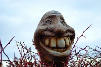 smile-20230_1920